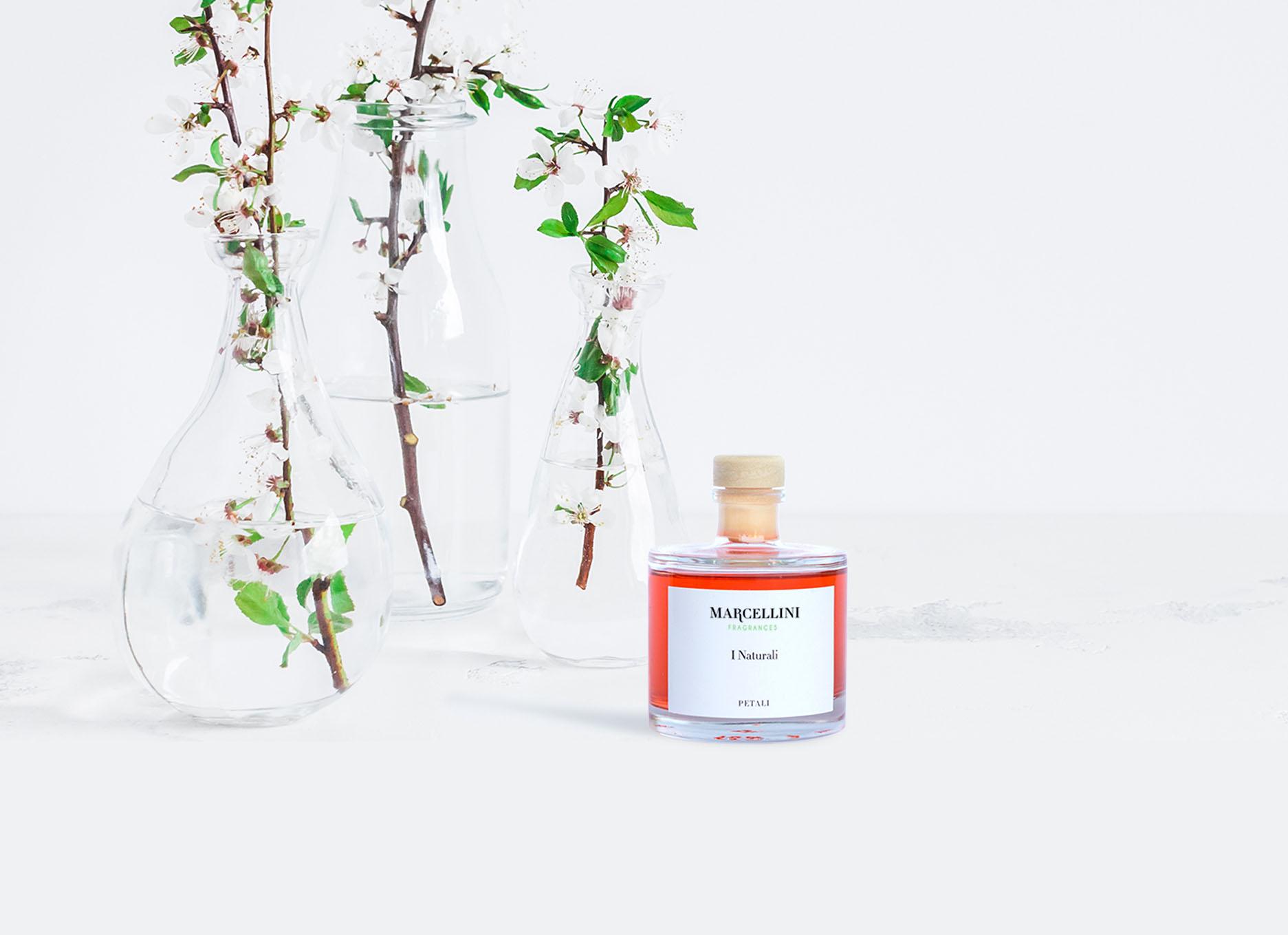 fragranze marcellini